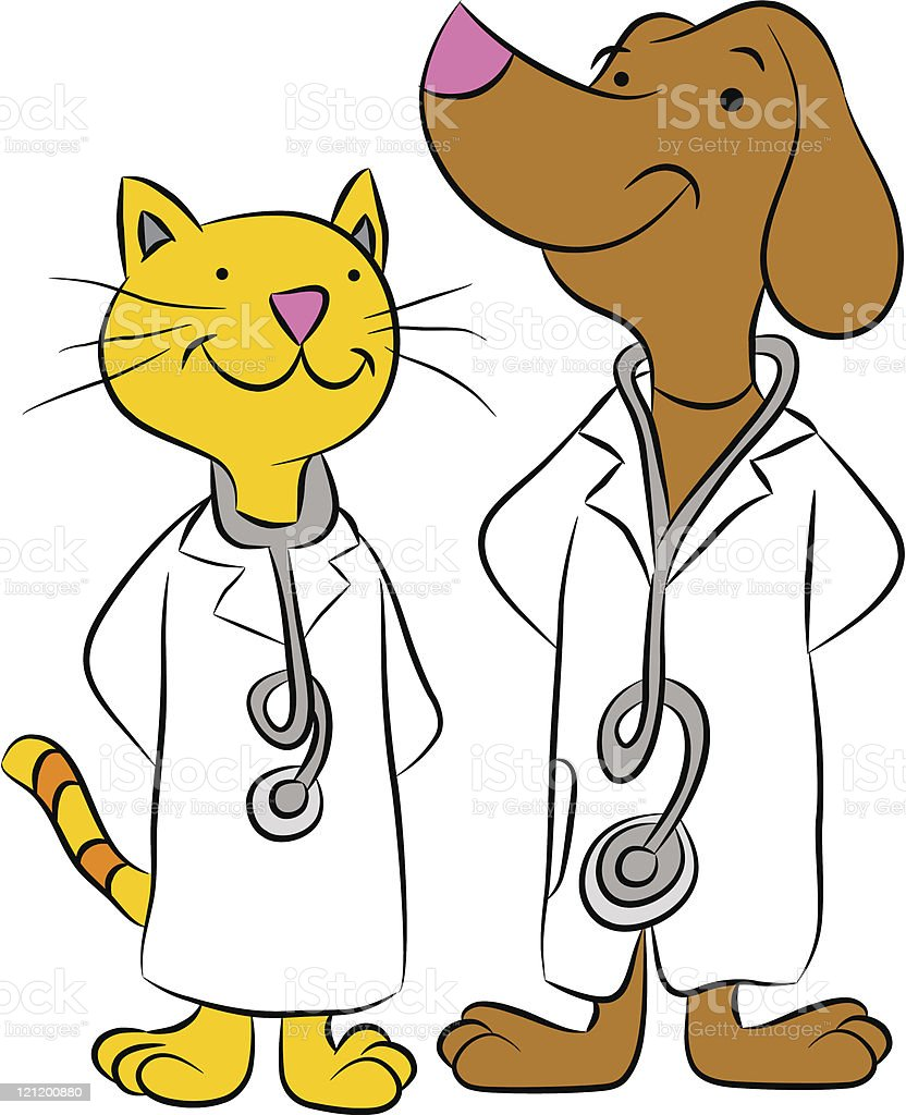 Cat and Dog Doctors royalty-free stock vector art