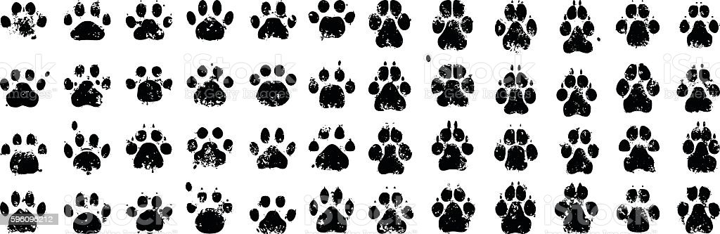Cat and Dog Prints vector art illustration