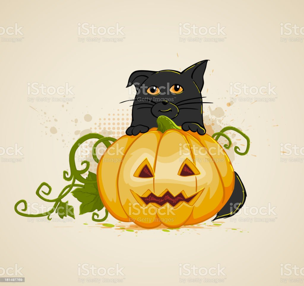 Cat and pumpkin royalty-free stock vector art