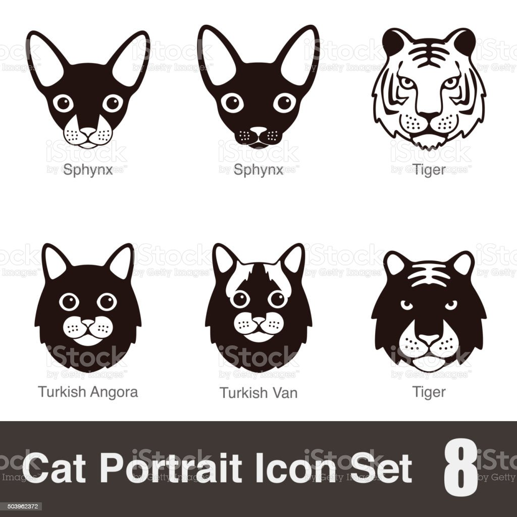 Cat breed face cartoon flat icon series vector art illustration