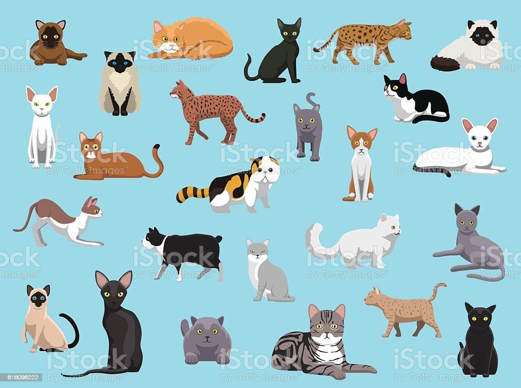 25 Cat Breeds Cartoon Vector Illustration vector art illustration