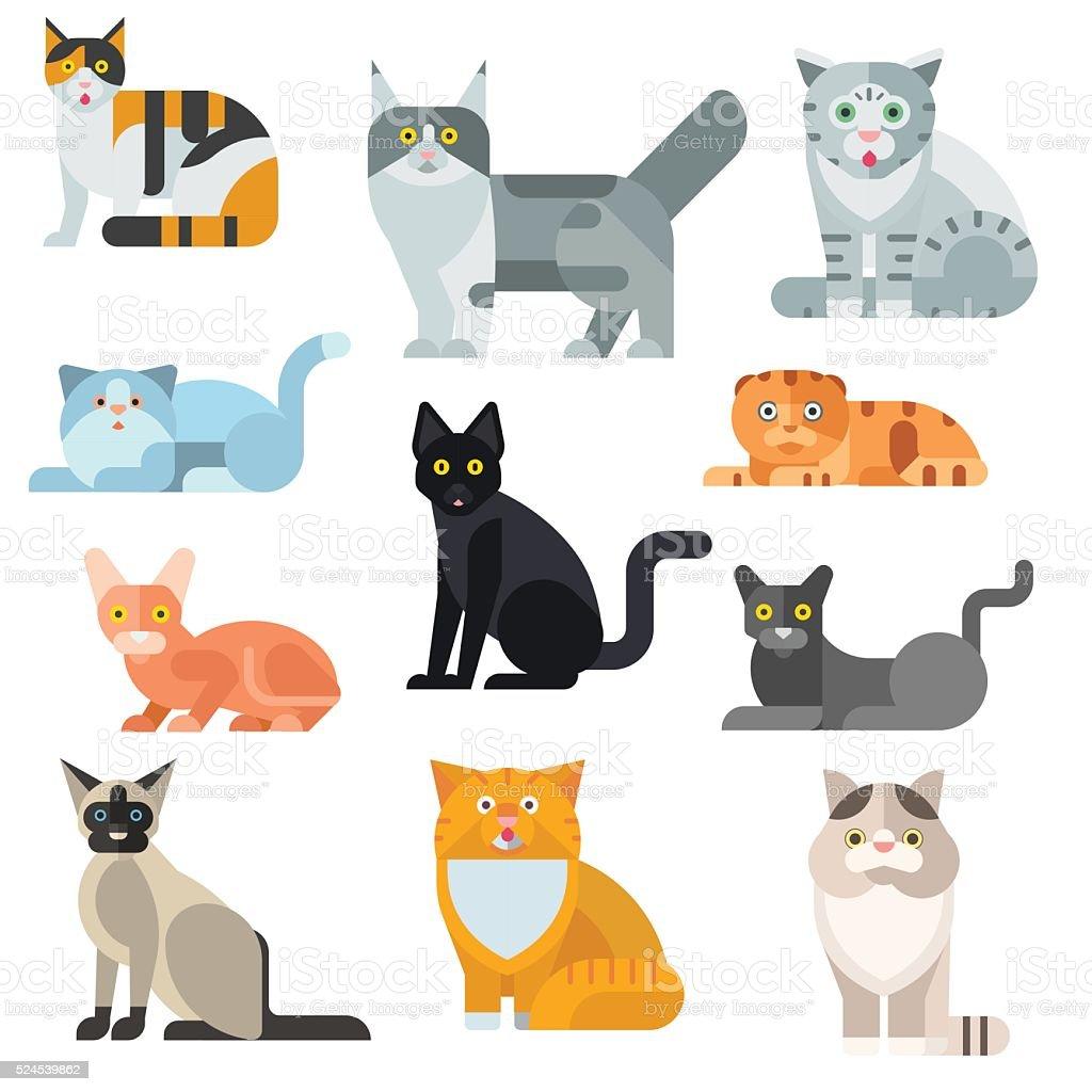 Cat breeds poster cute pet animal set vector illustration vector art illustration