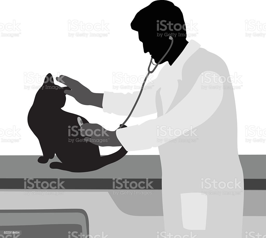 Cat Checkup Appointment vector art illustration