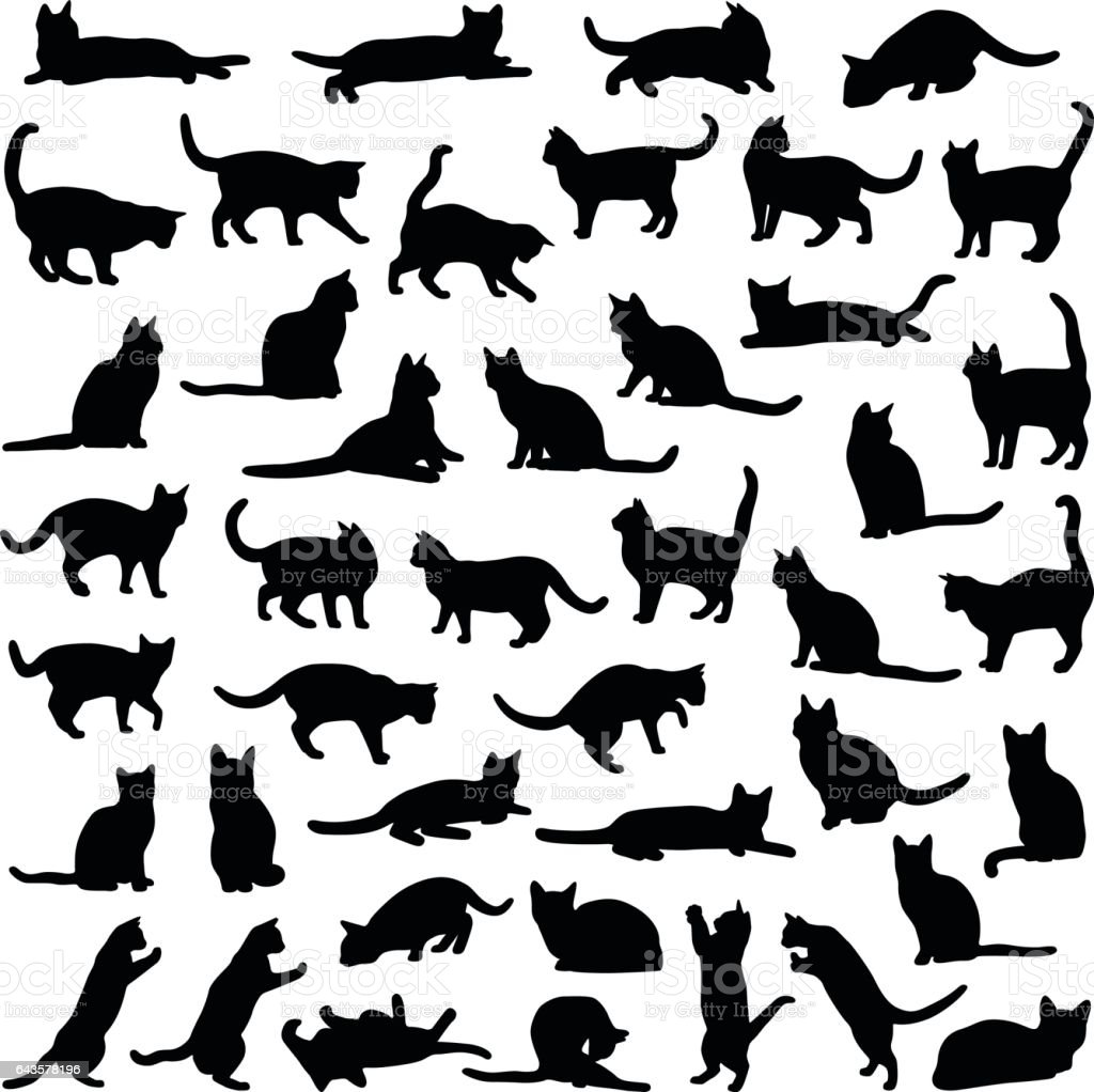 Cat collection - vector silhouette vector art illustration