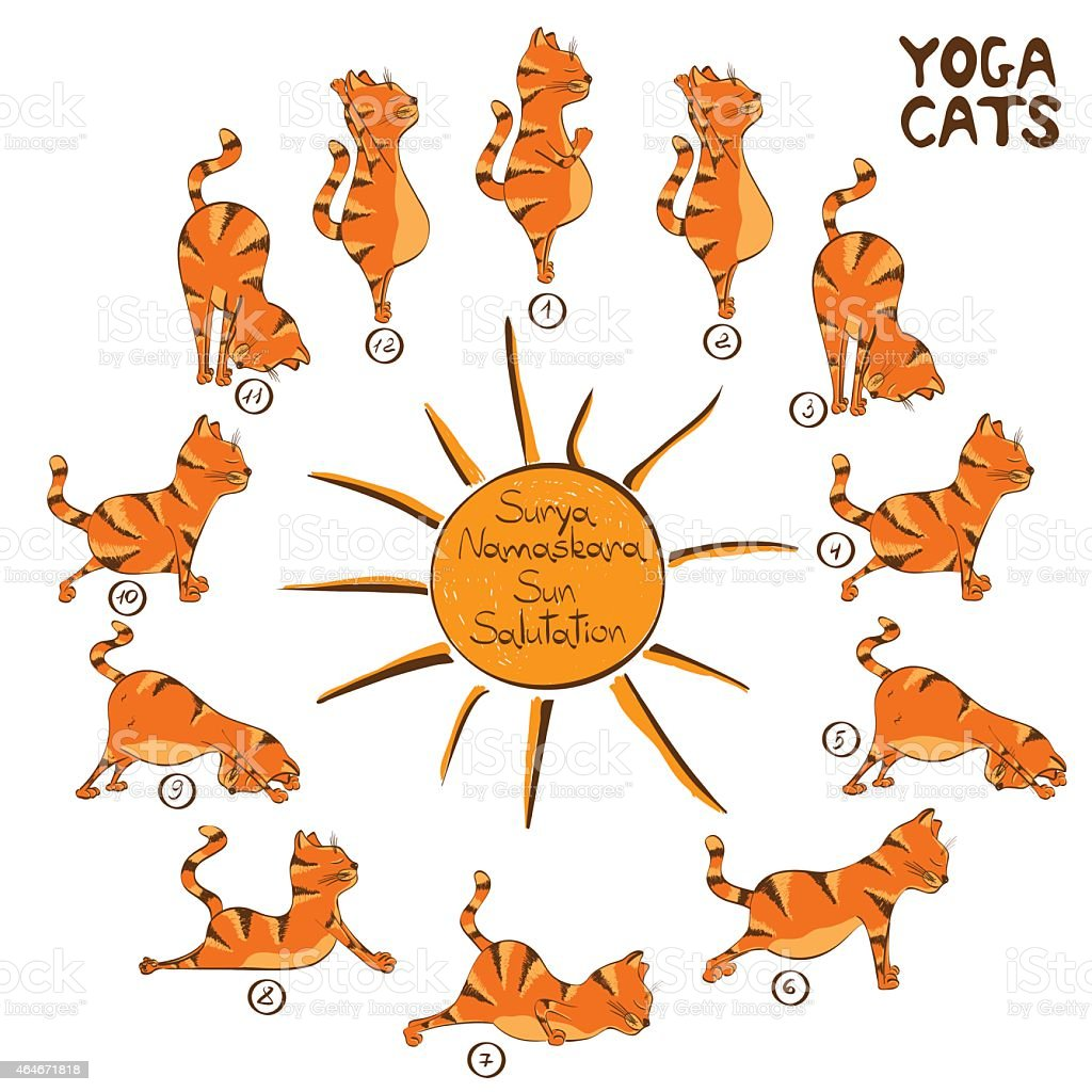Cat doing yoga position of Surya Namaskara vector art illustration