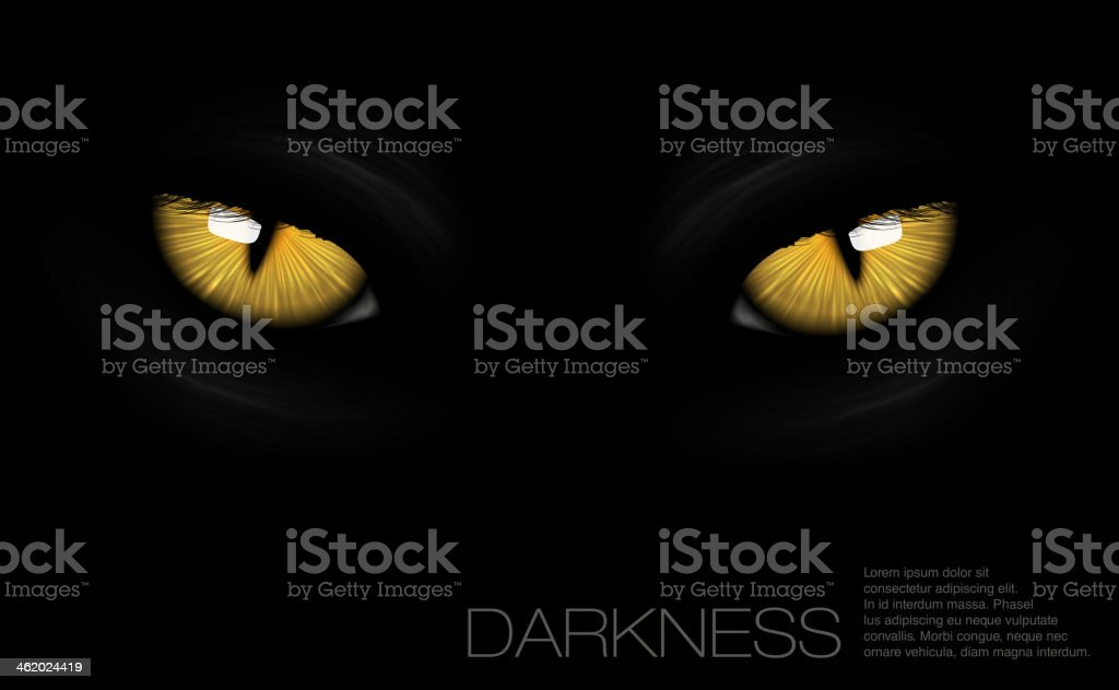 cat eyes in darkness vector art illustration