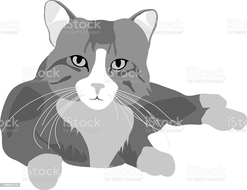 Cat Face vector art illustration