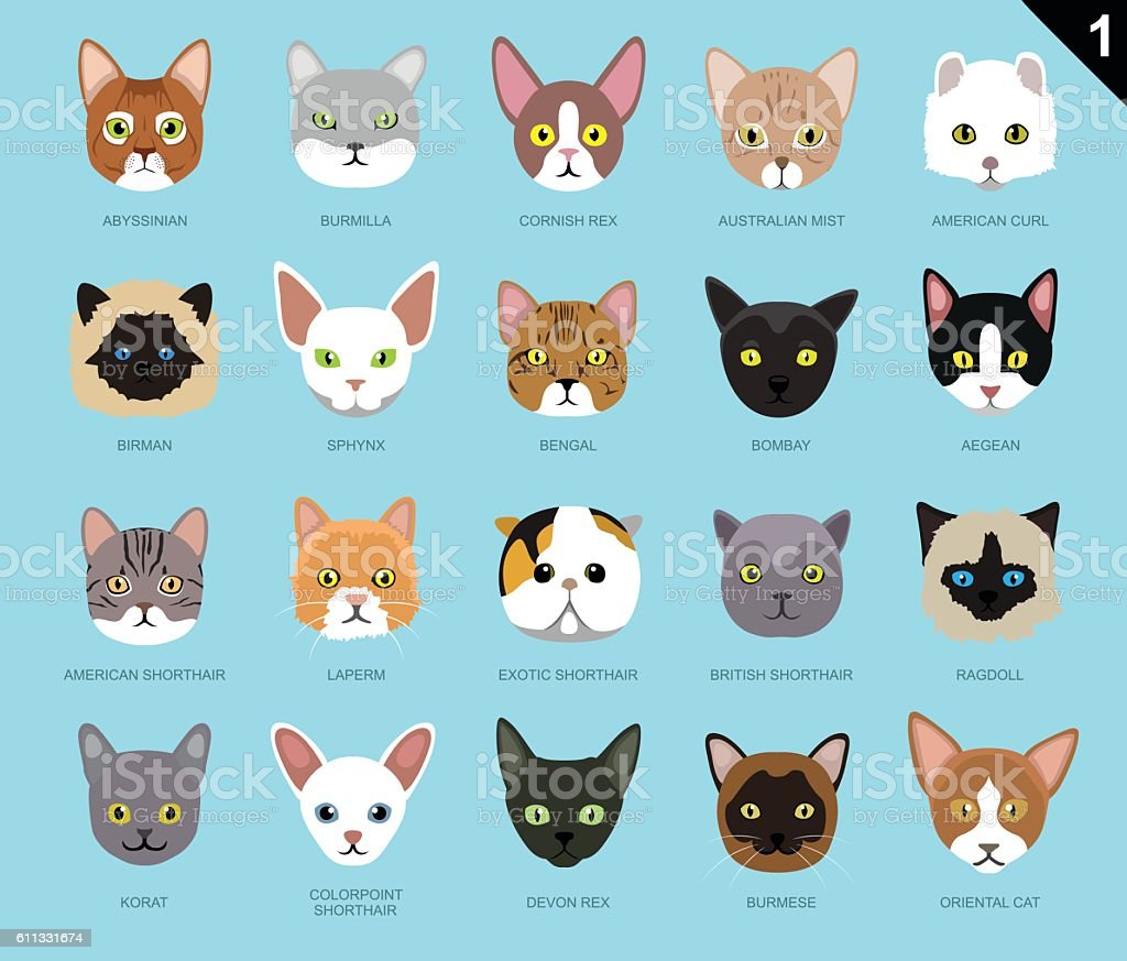 Cat Faces Icon Cartoon 1 vector art illustration
