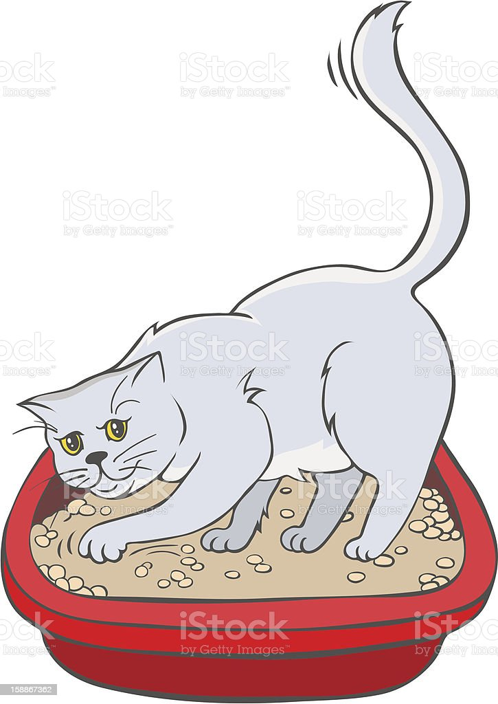 Cat  in the tray royalty-free stock vector art
