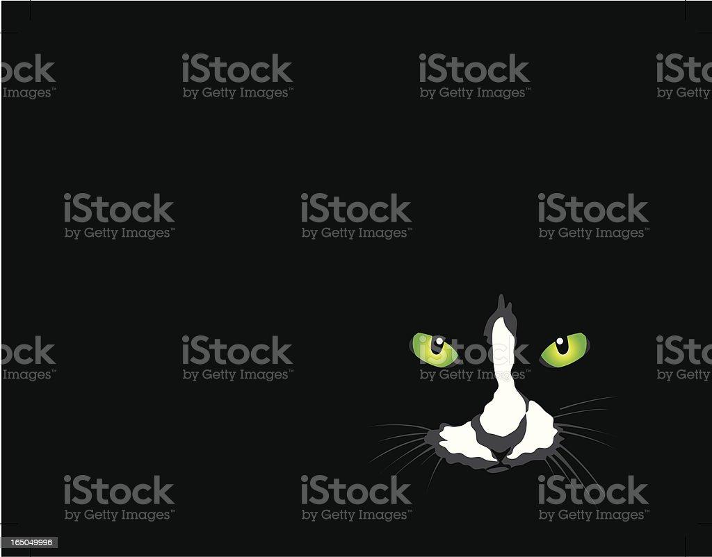 Cat On Black vector art illustration