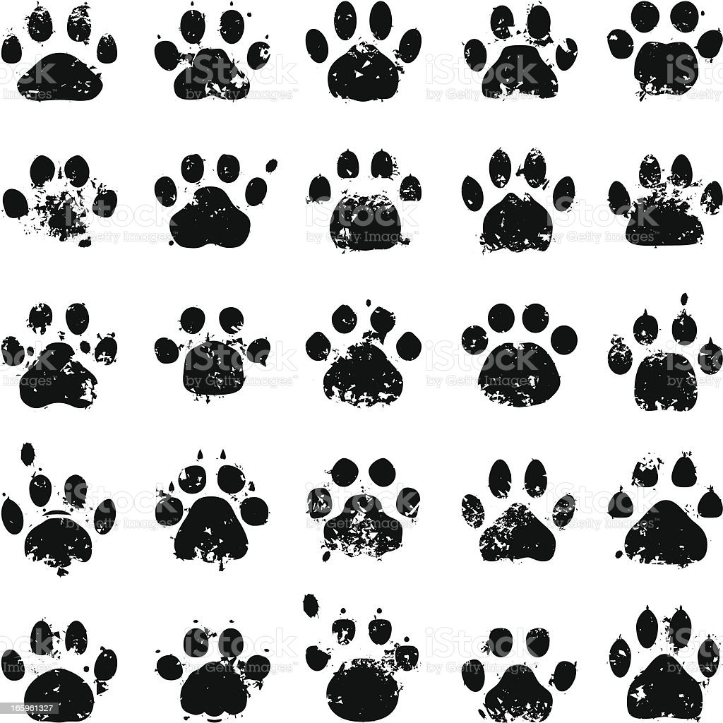 Cat Paw Prints vector art illustration