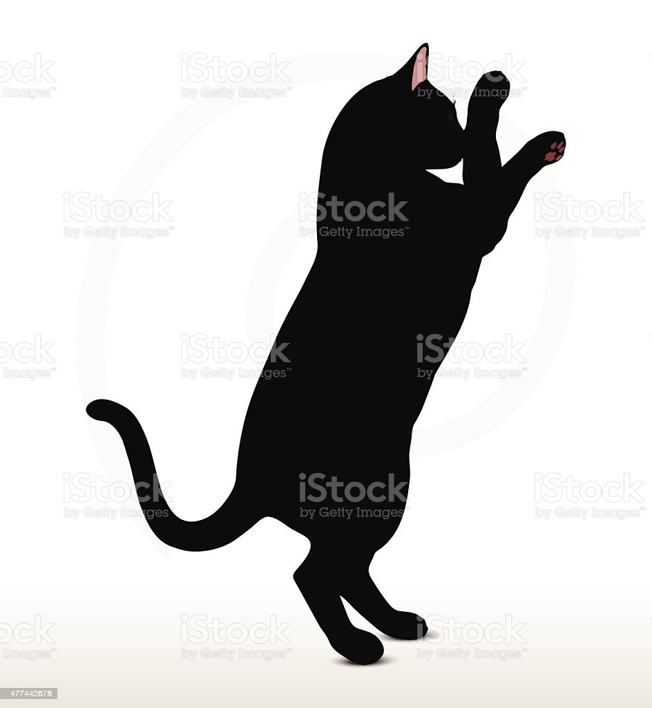cat silhouette in Boxing pose vector art illustration