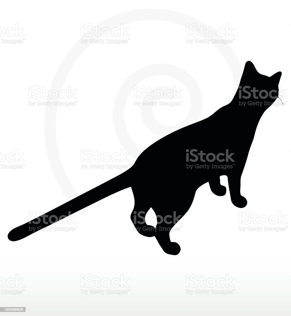 cat silhouette vector art illustration