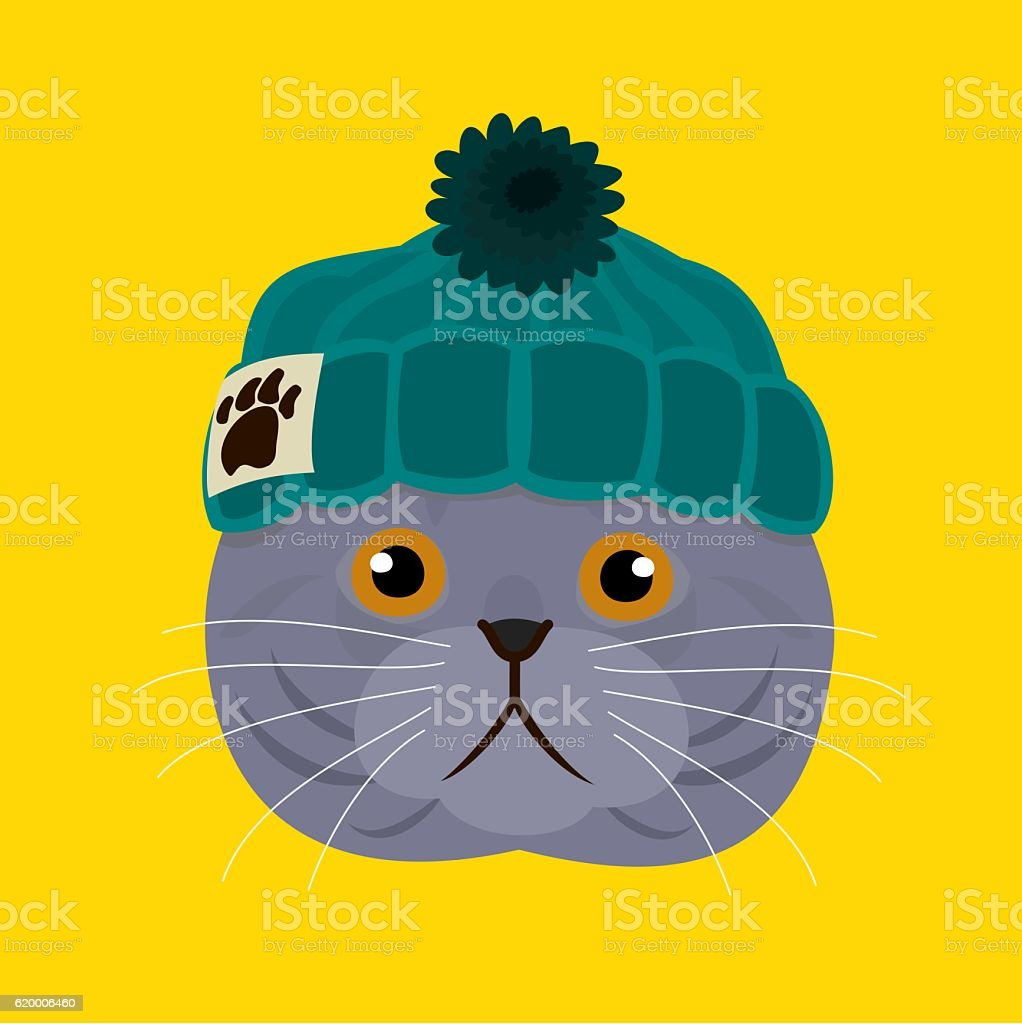 Cat with knitted beanie vector art illustration