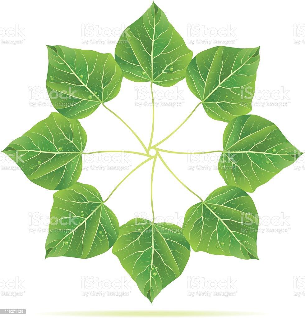 Catalpa Tree Leaf Ring royalty-free stock vector art