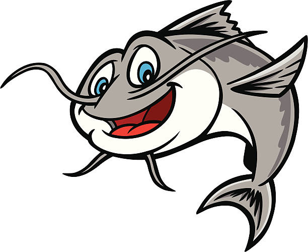 Catfish Clip Art, Vector Images & Illustrations - iStock
