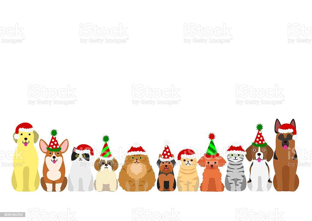 cats and dogs border set with christmas party hat stock