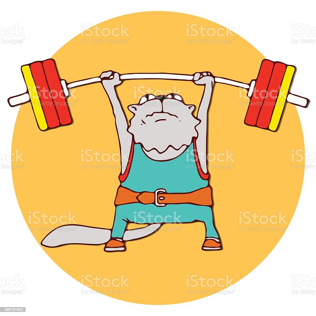 Cats athlete in sports wear. Weightlifter cat lifting the barbell....