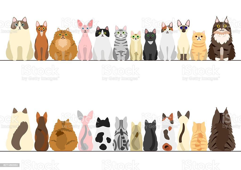 cats border set, front view and rear view vector art illustration