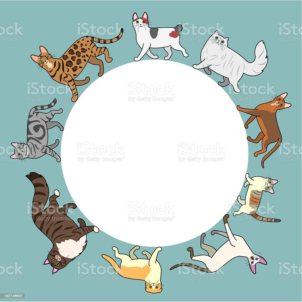 cats circle frame with copy space vector art illustration