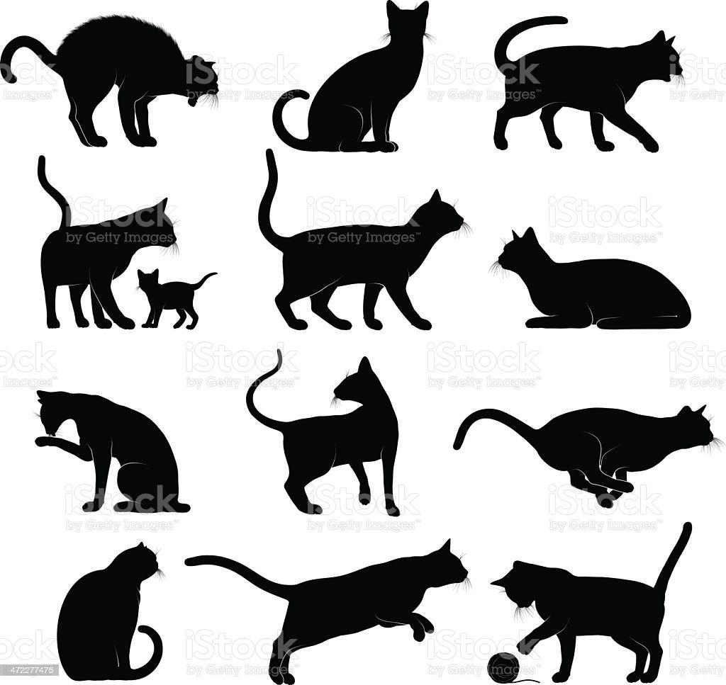 Cats Silhouettes vector art illustration