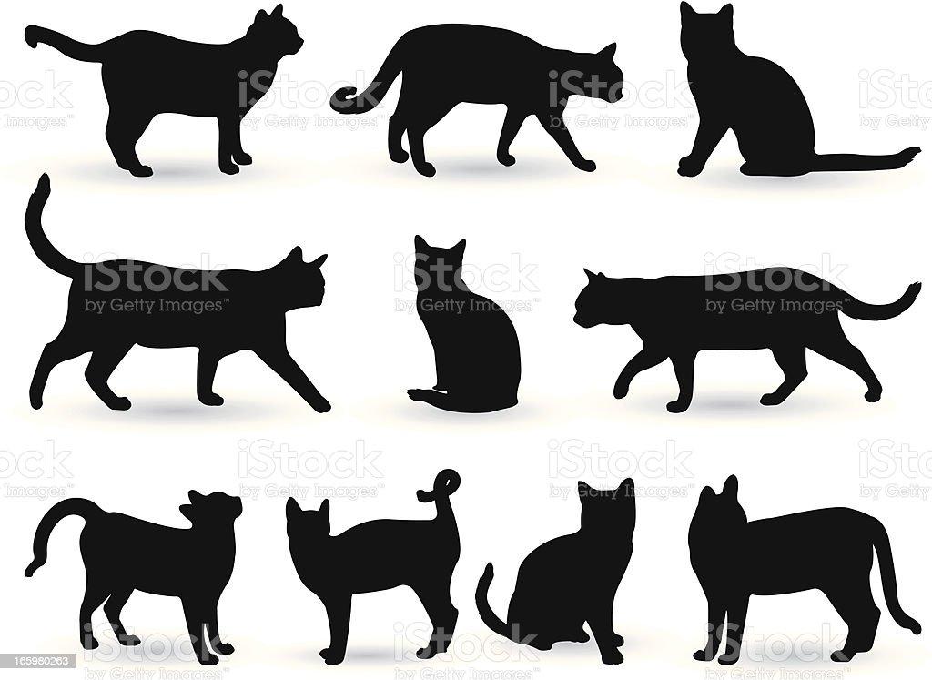 cats vector art illustration