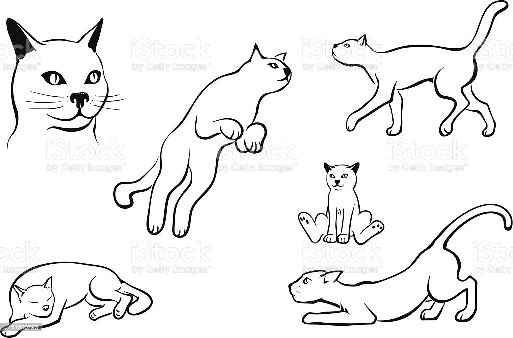 Cats royalty-free stock vector art