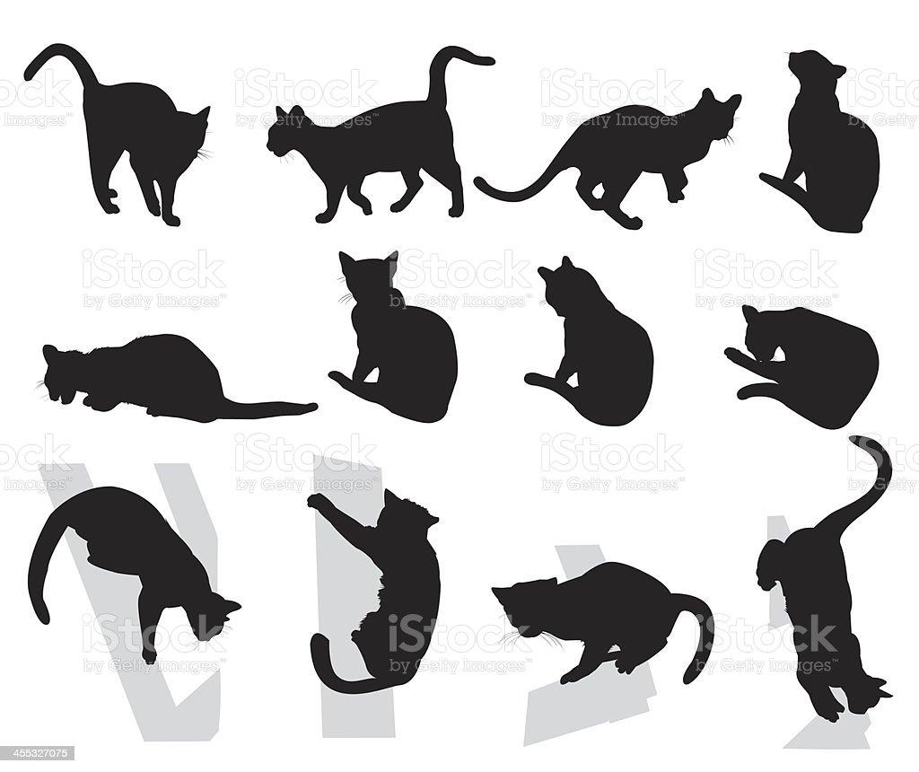 Cats royalty-free stock vector art