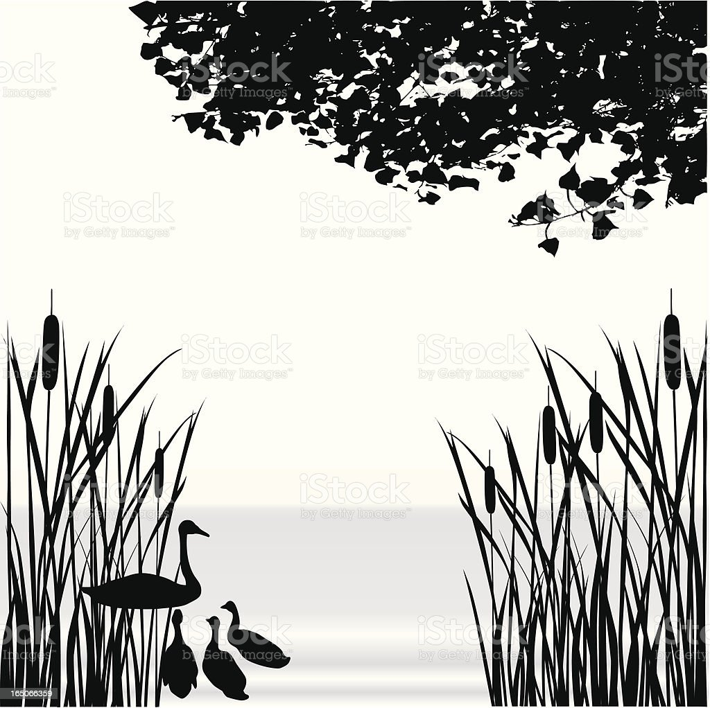 Cattail Pond Vector Silhouette royalty-free stock vector art