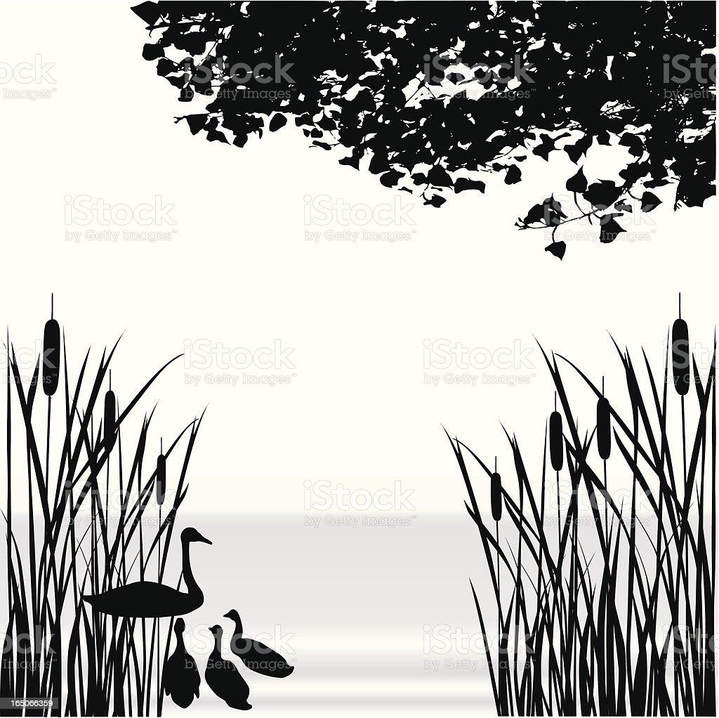 Cattail Pond Vector Silhouette vector art illustration