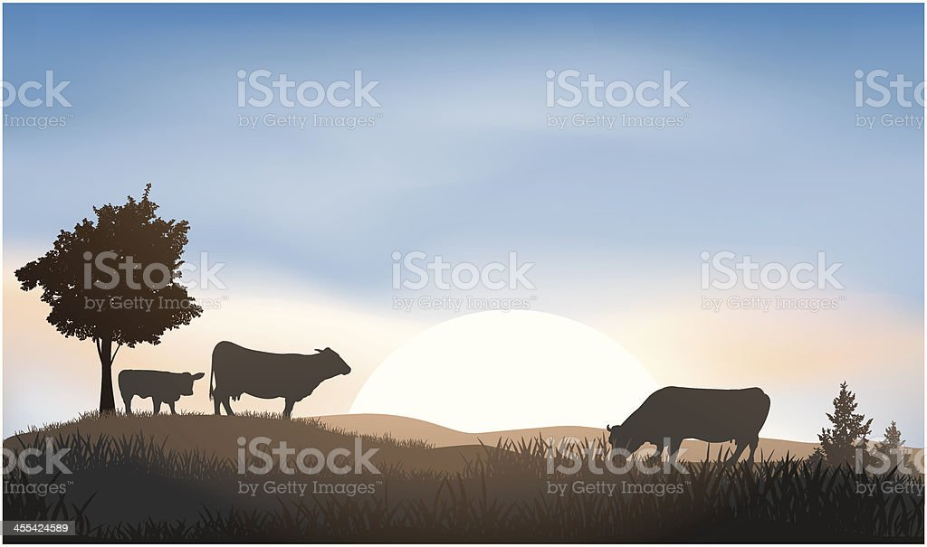 Cattle royalty-free stock vector art