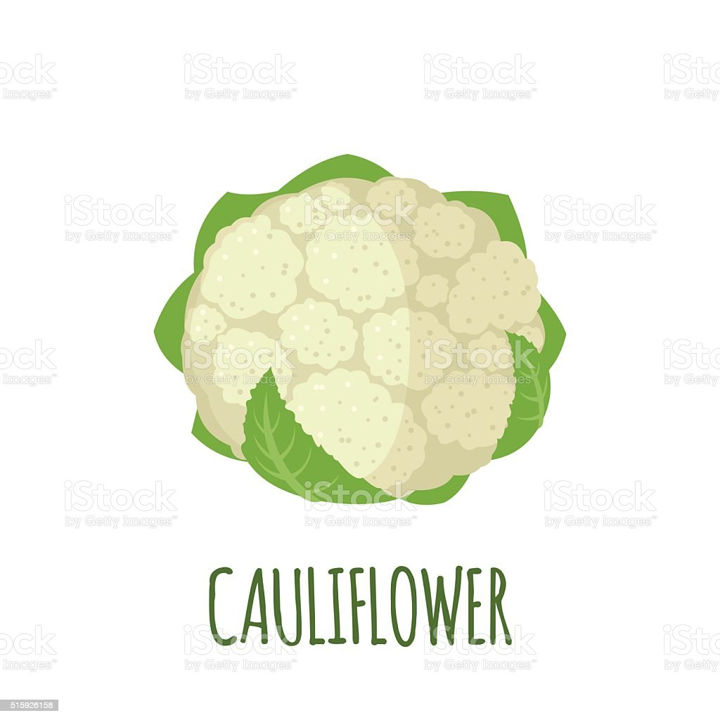 Cauliflower icon in flat style on white background vector art illustration