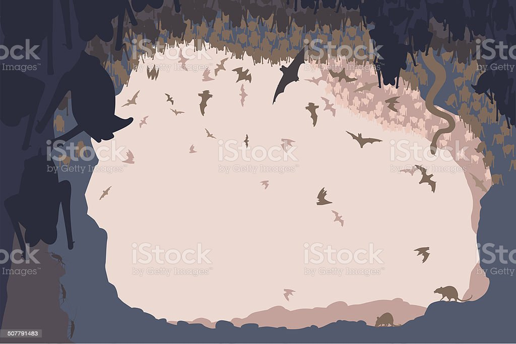 Cave life vector art illustration
