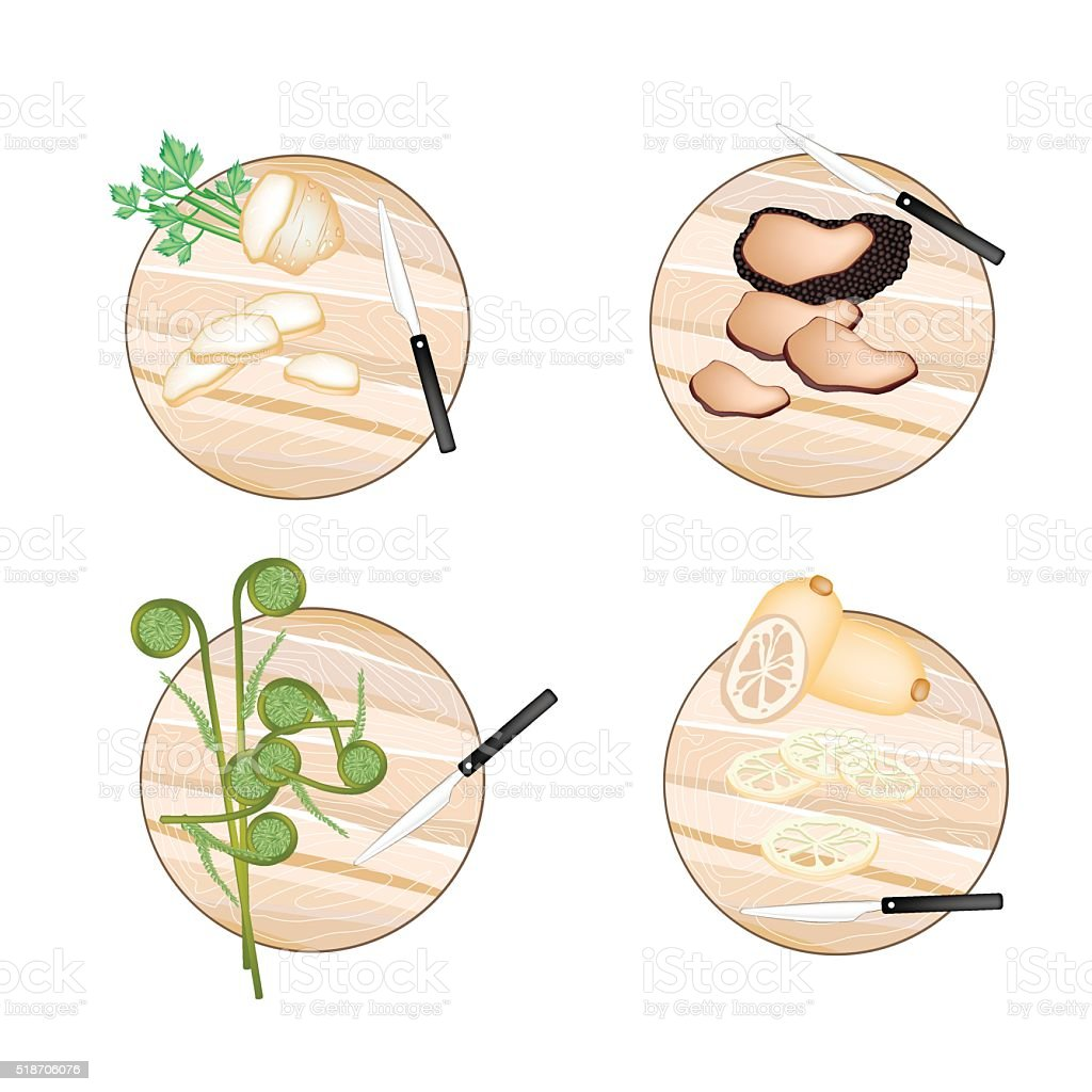 Celery Root , Truffle Mushrooms, Fiddleheads and Water Lily Root vector art illustration