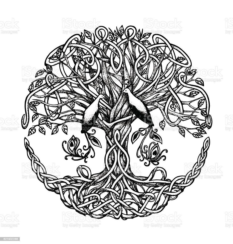 Celtic tree with birds of paradise. Graphic arts, dotwork vector art illustration