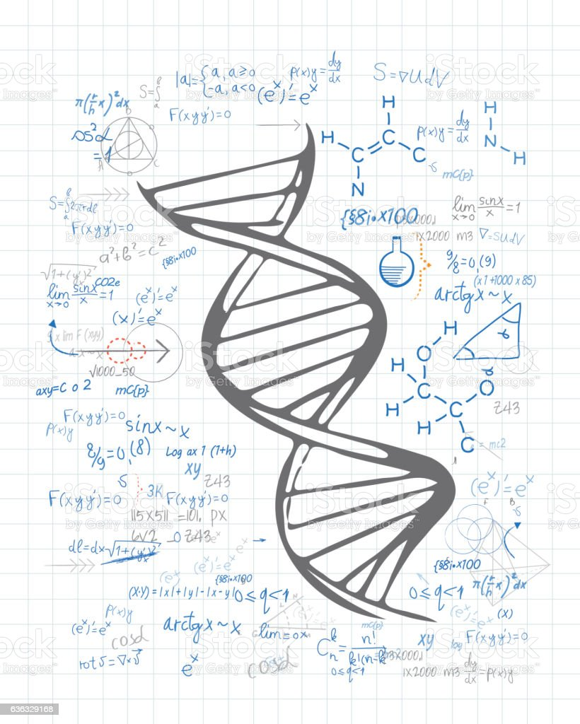 DNA Chain drawing on the paper vector art illustration