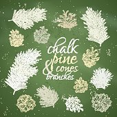 Chalk pine tree branches with cones for Christmas decorations.