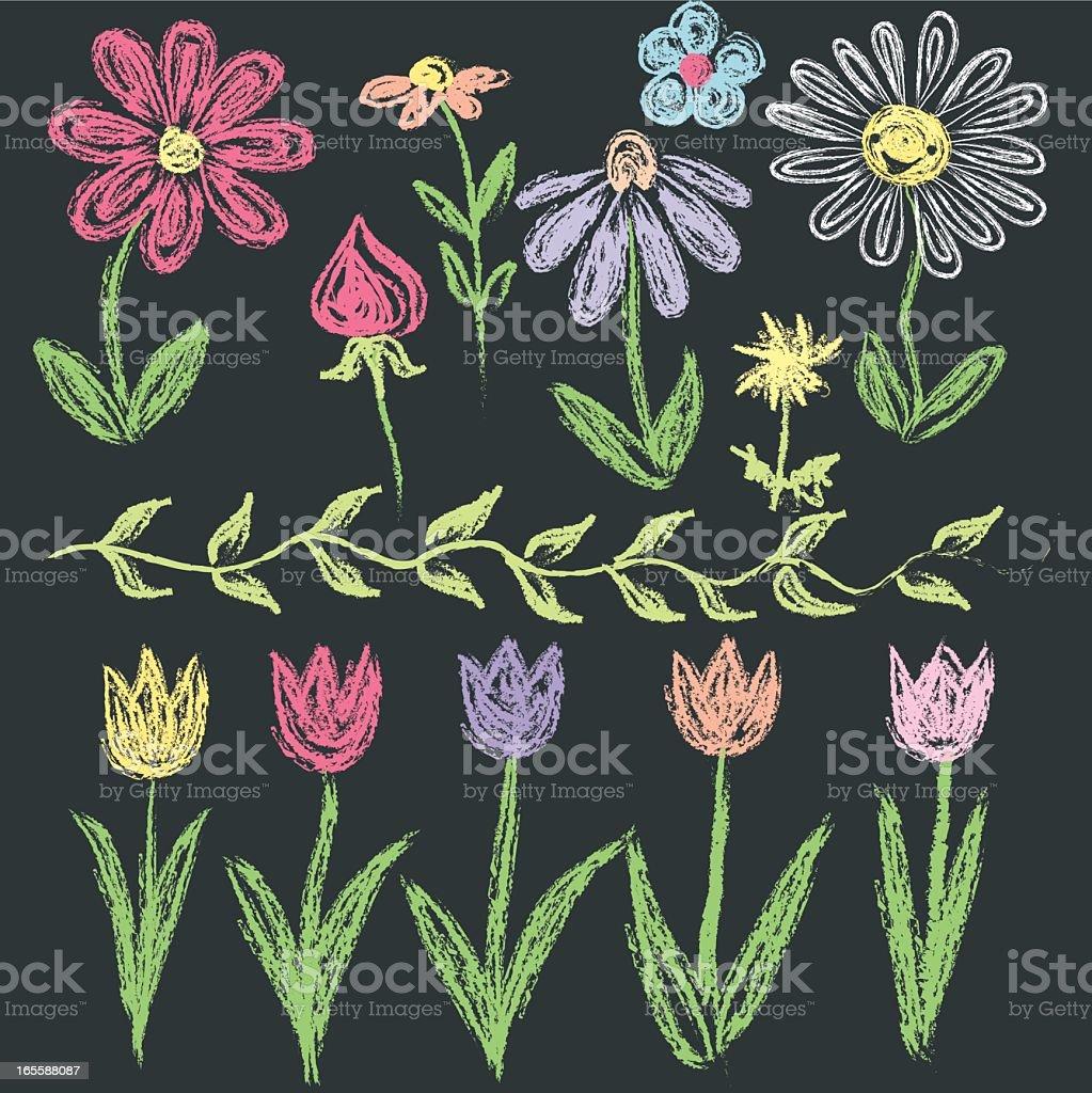 Chalkboard doodle flowers in various colors. vector art illustration