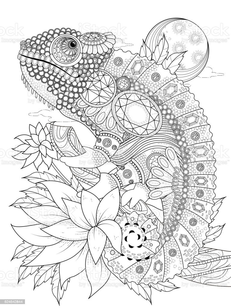 chameleonb adult coloring page vector art illustration