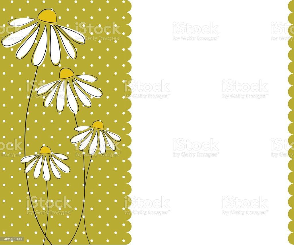 Chamomile invitation card template vector art illustration