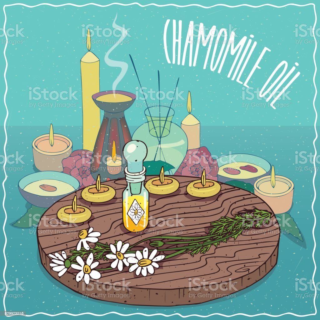 Chamomile oil used for aromatherapy vector art illustration