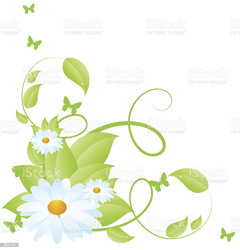 Chamomile pattern royalty-free stock vector art