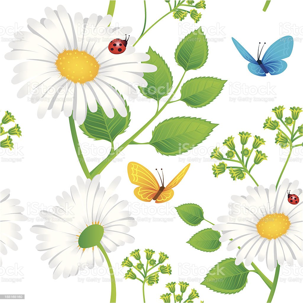 Chamomile seamless background royalty-free stock vector art