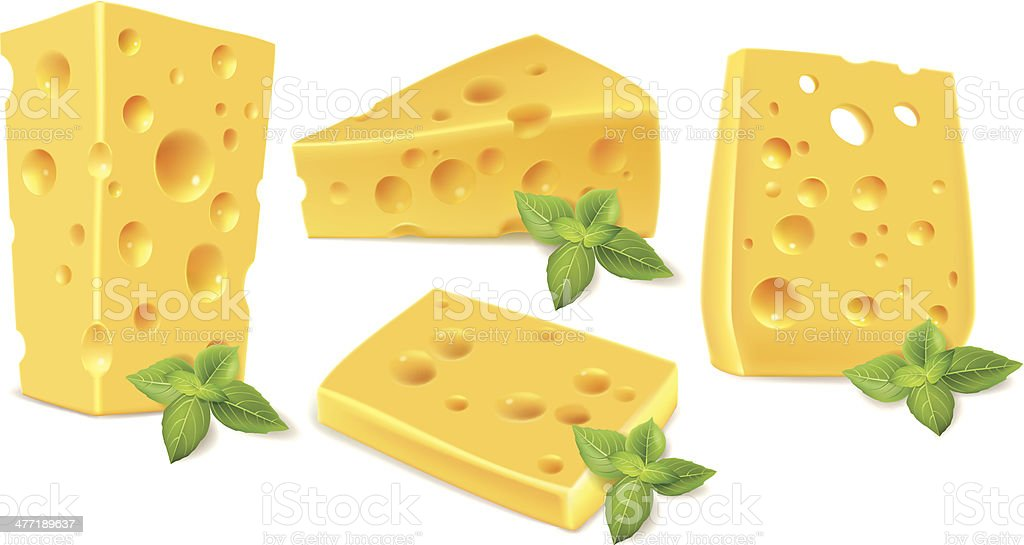 Cheese and basil vector art illustration