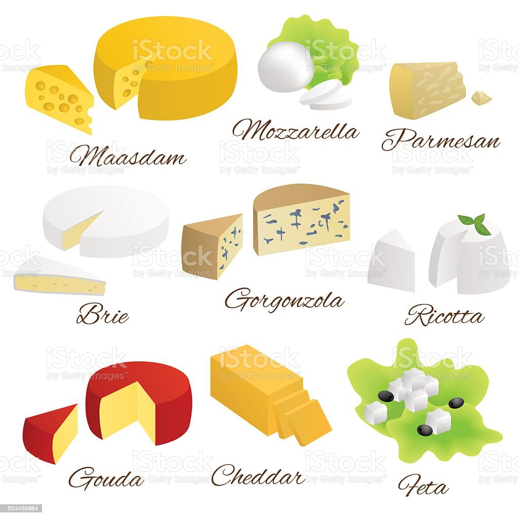 Cheese isolated food set different types illustration vector vector art illustration