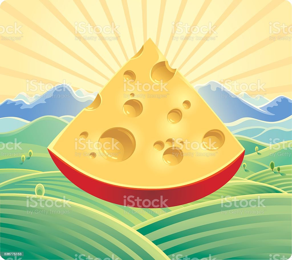 Cheese on the field background. vector art illustration