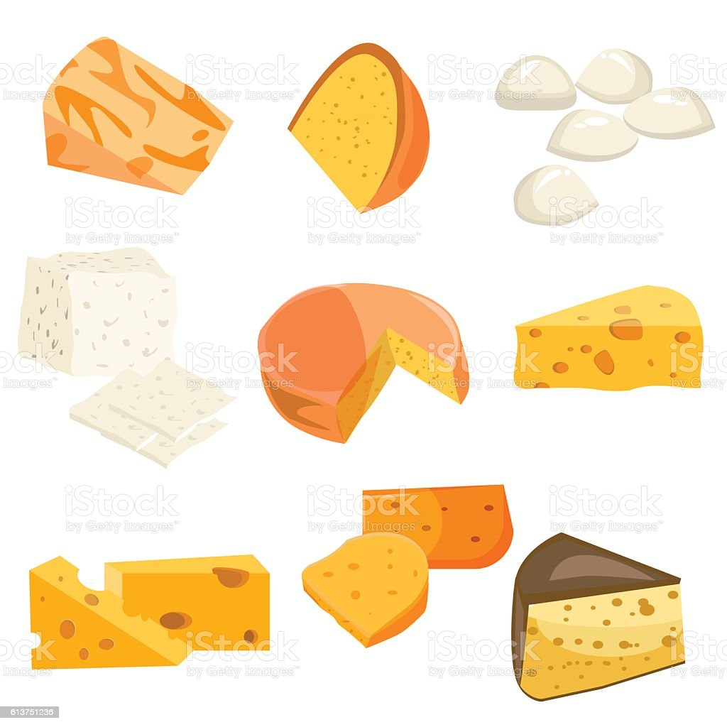 Cheese types. Modern flat style realistic vector illustration icons. vector art illustration
