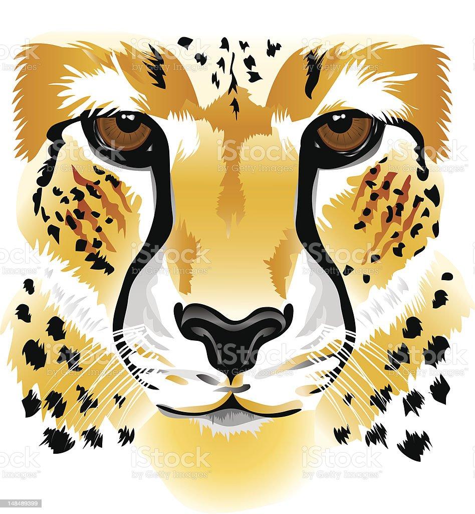 Cheetah face royalty-free stock vector art