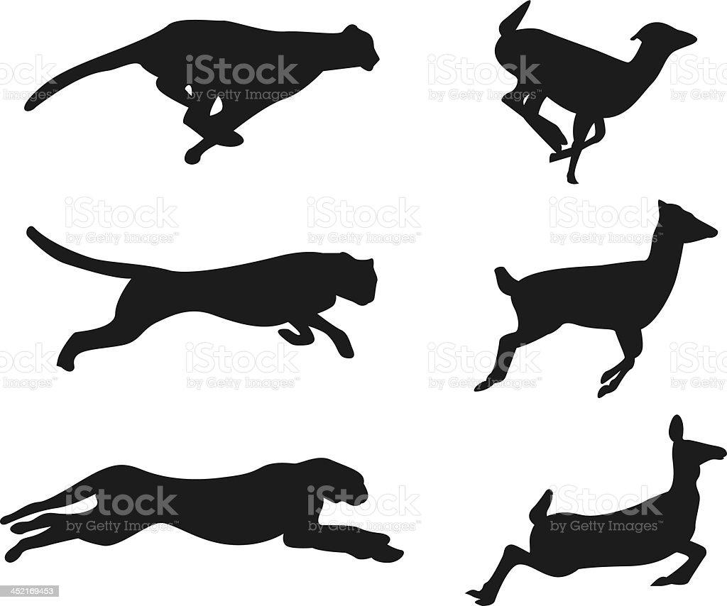 Cheetah hunting a dear sillouhette collection vector art illustration