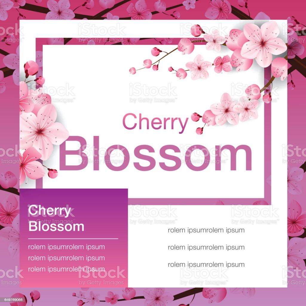 cherry blossom, banner design, sakura Japan, vector illustration. vector art illustration